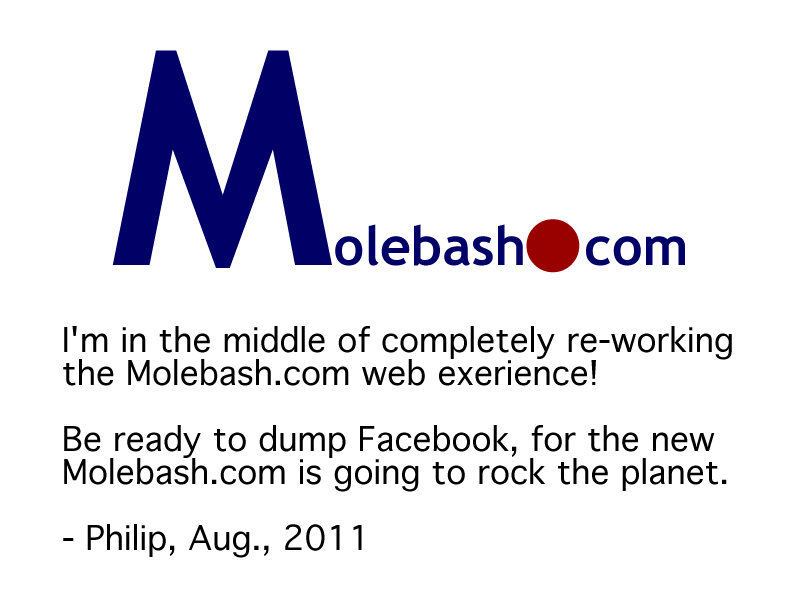 Temporary Molebash Home